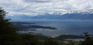 Beagle channel (10)_2